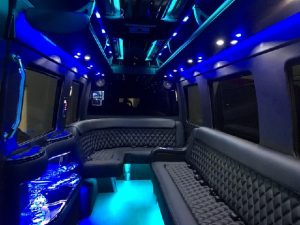 luxury Sprinter rental in Scottsdale, AZ